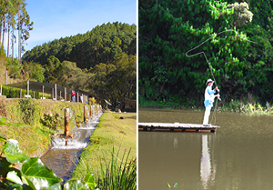 Trutário & Pesca
